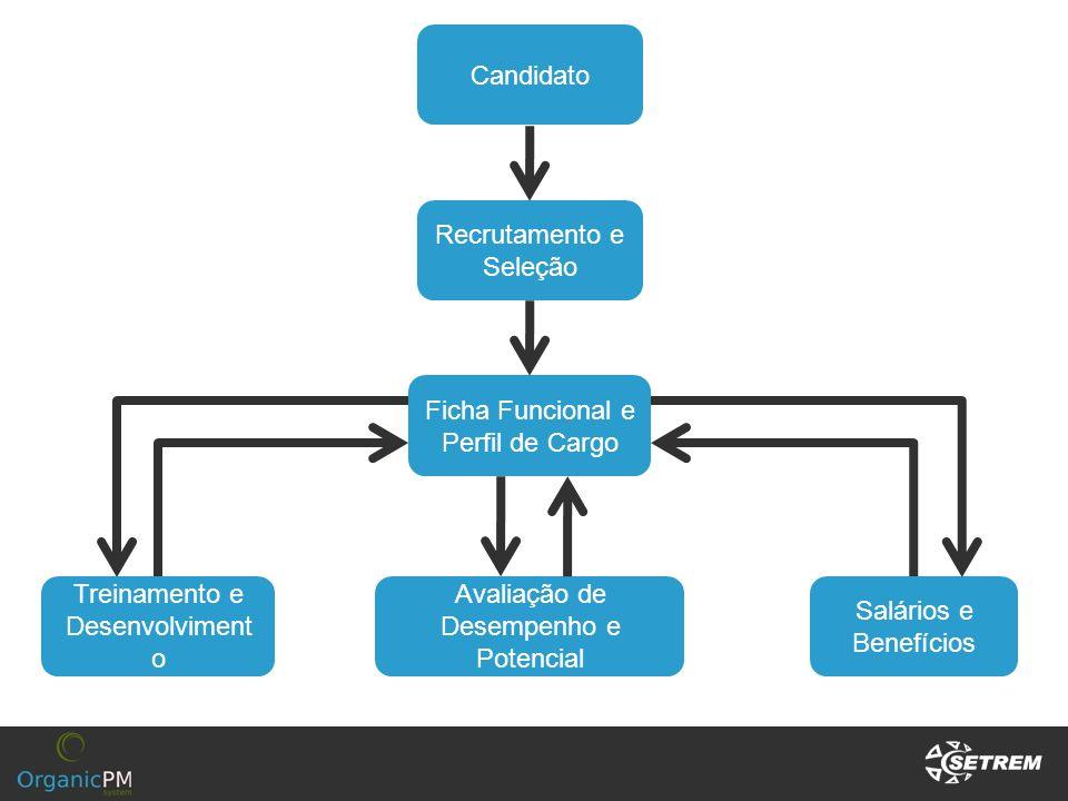Candidato Recrutamento e Seleção Ficha Funcional e Perfil de Cargo Treinamento e Desenvolviment o Avaliação de Desempenho e Potencial Salários e Benef