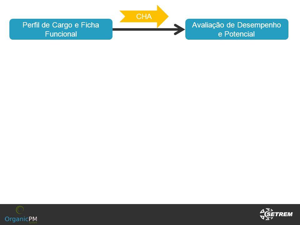 Avaliação de Desempenho e Potencial Perfil de Cargo e Ficha Funcional CHA