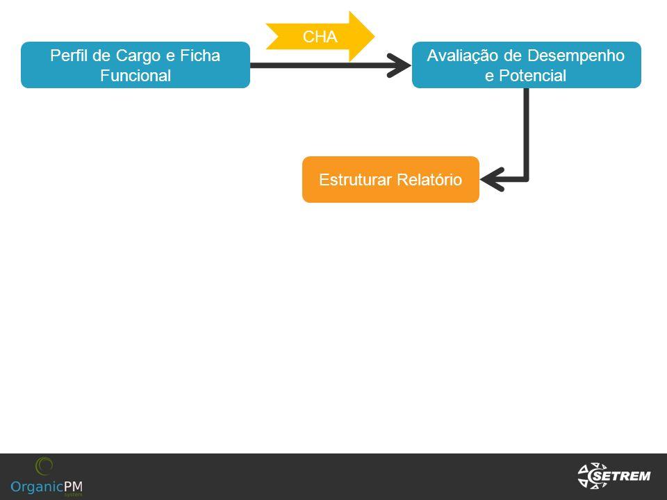 Avaliação de Desempenho e Potencial Estruturar Relatório Perfil de Cargo e Ficha Funcional CHA