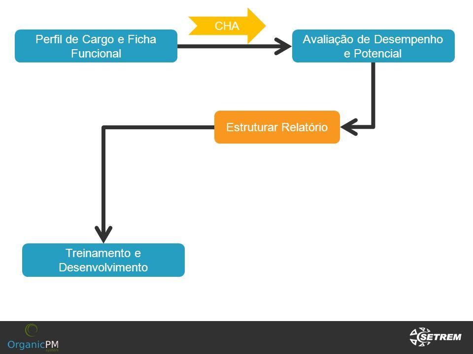 Avaliação de Desempenho e Potencial Estruturar Relatório Perfil de Cargo e Ficha Funcional CHA Treinamento e Desenvolvimento