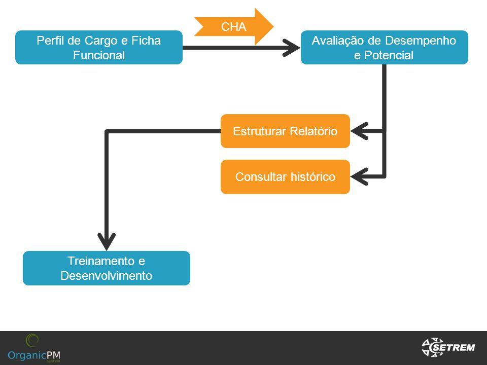 Avaliação de Desempenho e Potencial Estruturar Relatório Consultar histórico Perfil de Cargo e Ficha Funcional CHA Treinamento e Desenvolvimento