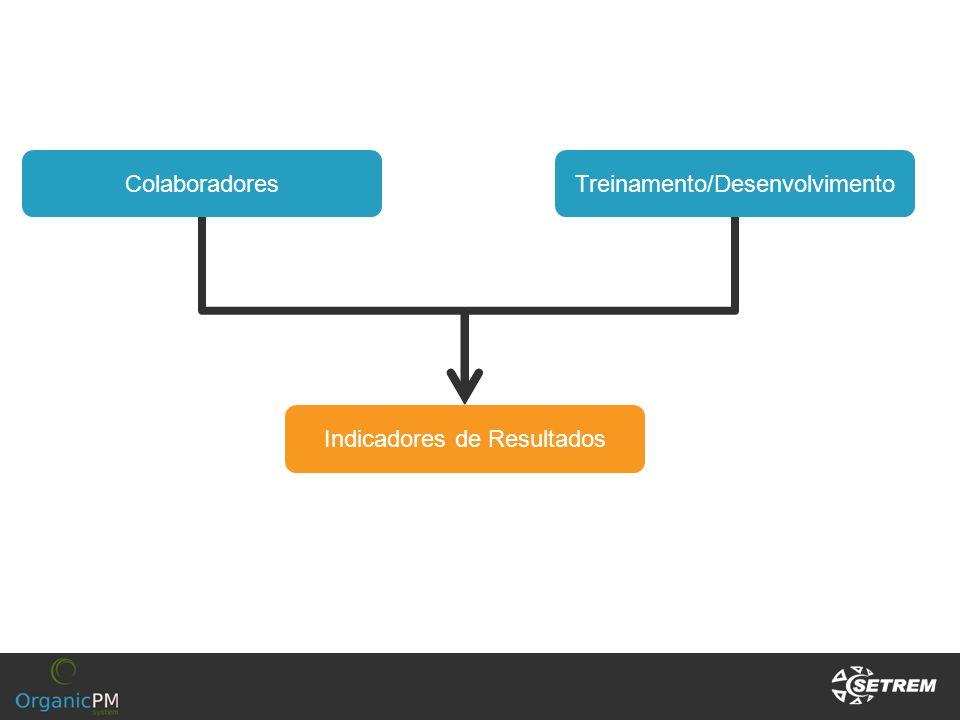 Treinamento/DesenvolvimentoColaboradores Indicadores de Resultados