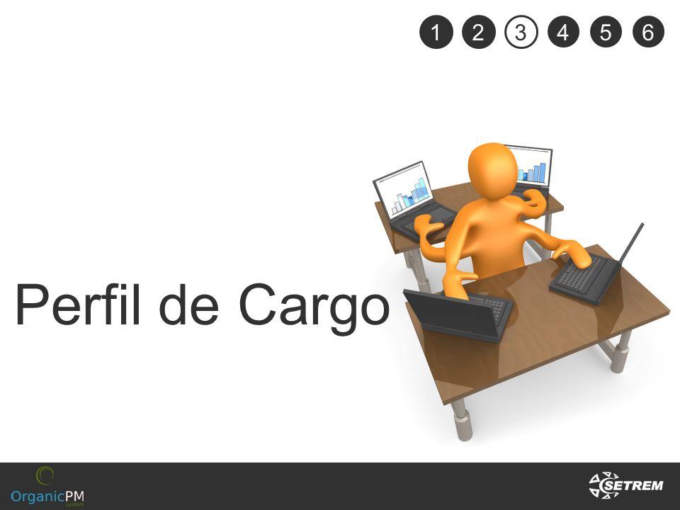 Perfil de Cargo 123 456