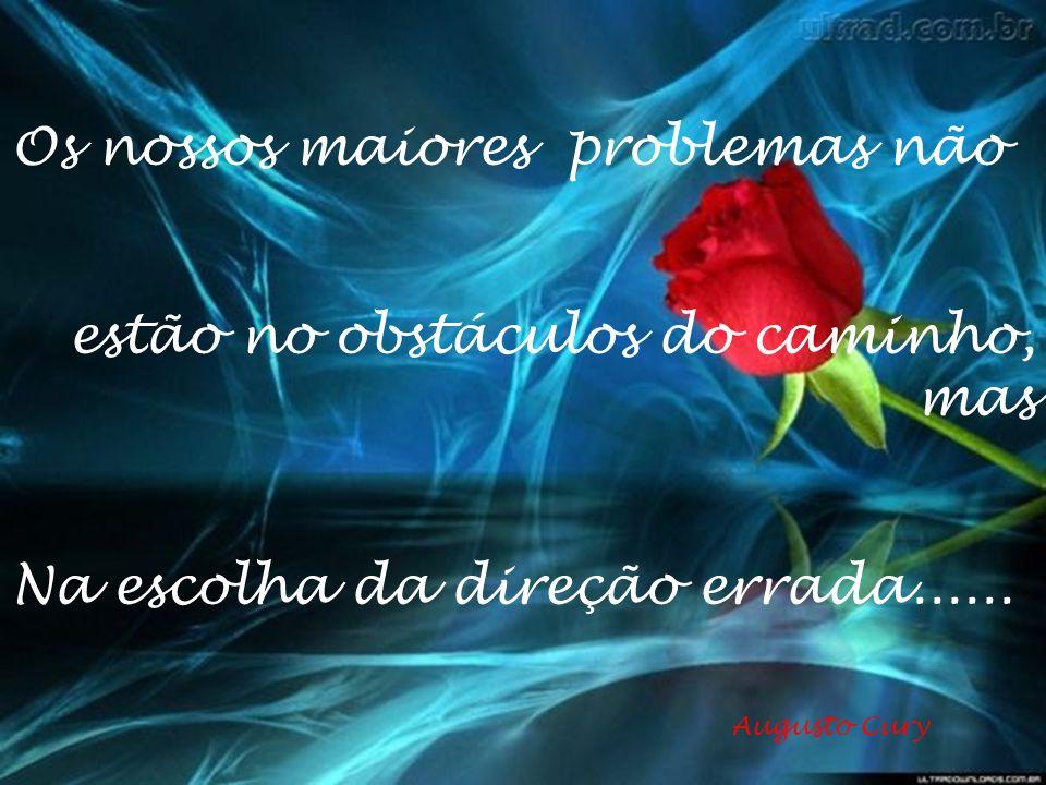 Os nossos maiores problemas não estão no obstáculos do caminho, mas Na escolha da direção errada......