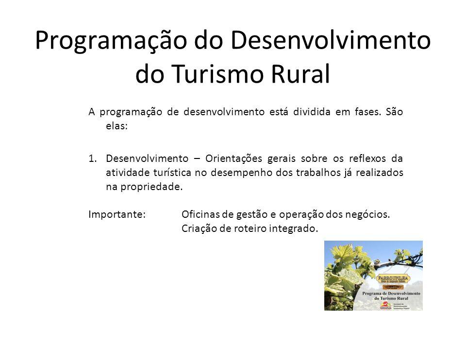 Programação do Desenvolvimento do Turismo Rural A programação de desenvolvimento está dividida em fases. São elas: 1.Desenvolvimento – Orientações ger