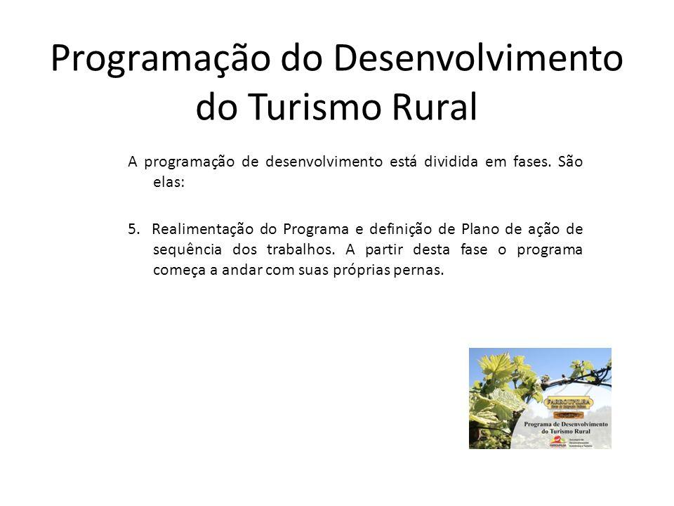 Programação do Desenvolvimento do Turismo Rural A programação de desenvolvimento está dividida em fases. São elas: 5. Realimentação do Programa e defi