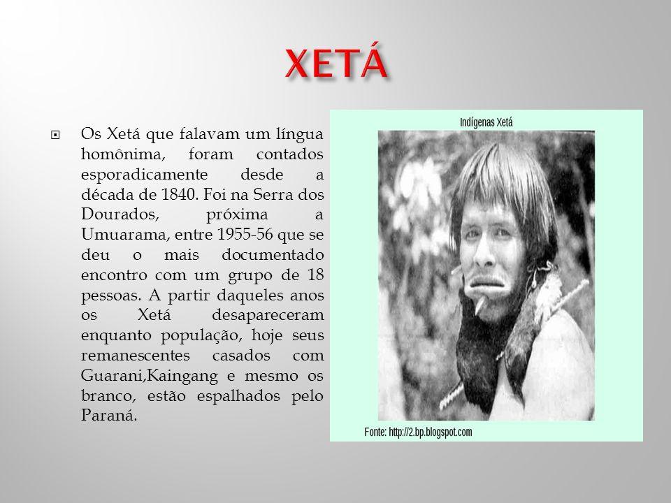 Os Xetá que falavam um língua homônima, foram contados esporadicamente desde a década de 1840.
