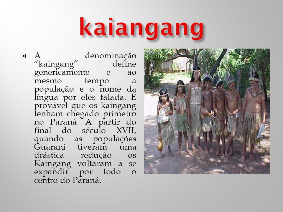 A denominação kaingang define genericamente e ao mesmo tempo a população e o nome da língua por eles falada.
