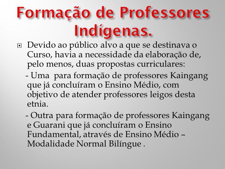 Os 29 cursistas indígenas iniciaram seus estudos em 2006, com o objetivo principal de tornarem-se aptos a lecionar para as séries iniciais (1ª a 4ª séries) da educação básica.