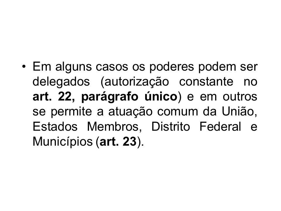 Em alguns casos os poderes podem ser delegados (autorização constante no art. 22, parágrafo único) e em outros se permite a atuação comum da União, Es