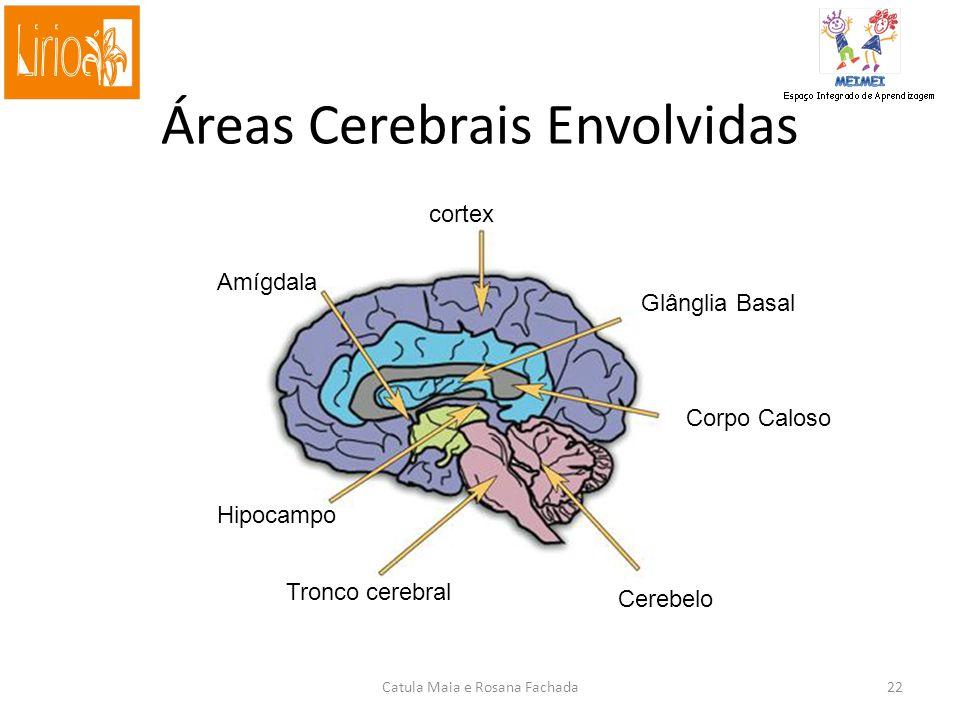 Áreas Cerebrais Envolvidas Glânglia Basal Hipocampo cortex Corpo Caloso Cerebelo Amígdala Tronco cerebral Catula Maia e Rosana Fachada22