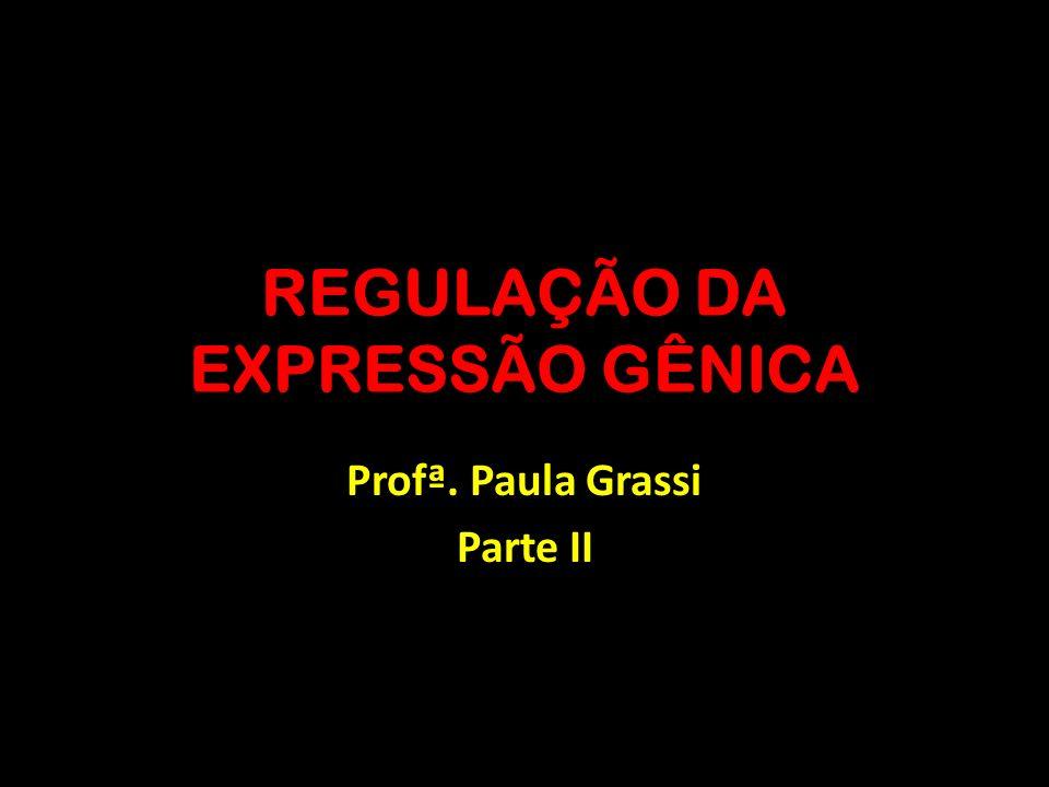 REGULAÇÃO DA EXPRESSÃO GÊNICA Profª. Paula Grassi Parte II