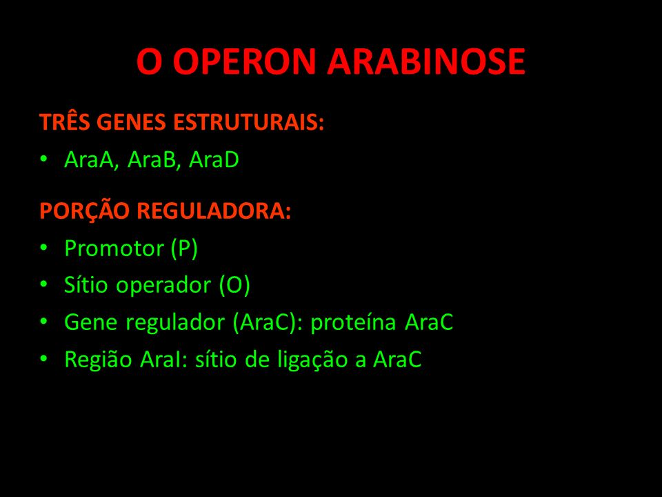 O OPERON ARABINOSE TRÊS GENES ESTRUTURAIS: AraA, AraB, AraD PORÇÃO REGULADORA: Promotor (P) Sítio operador (O) Gene regulador (AraC): proteína AraC Re