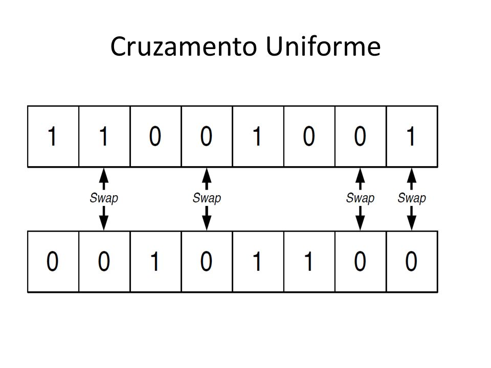 Cruzamento Uniforme