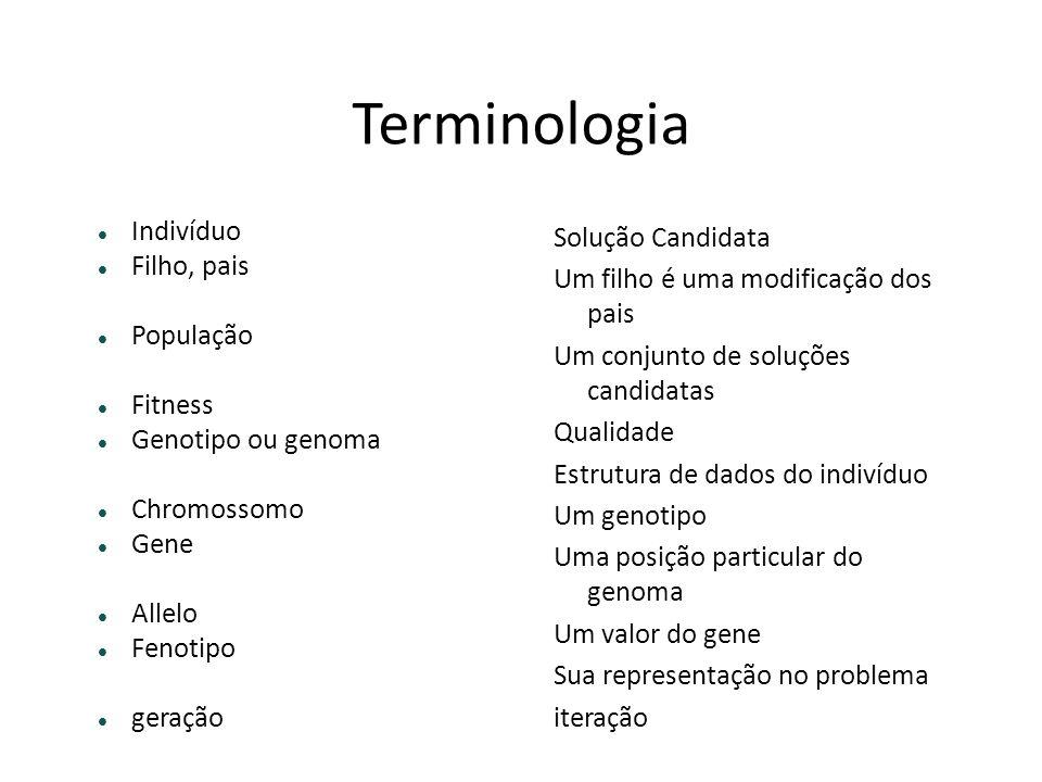 Terminologia Indivíduo Filho, pais População Fitness Genotipo ou genoma Chromossomo Gene Allelo Fenotipo geração Solução Candidata Um filho é uma modi