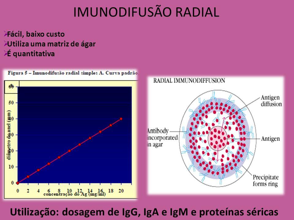 IMUNODIFUSÃO RADIAL Utilização: dosagem de IgG, IgA e IgM e proteínas séricas Fácil, baixo custo Utiliza uma matriz de ágar É quantitativa