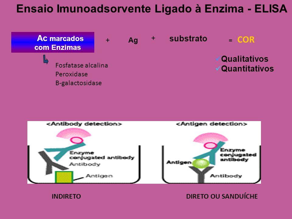 Ensaio Imunoadsorvente Ligado à Enzima - ELISA substrato Qualitativos Quantitativos Ac marcados com Enzimas + + Ag Fosfatase alcalina Peroxidase B-gal
