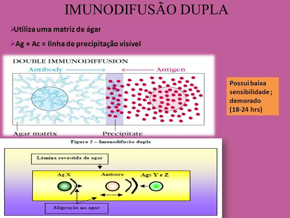 IMUNODIFUSÃO DUPLA Possui baixa sensibilidade ; demorado (18-24 hrs) Utiliza uma matriz de ágar Ag + Ac = linha de precipitação visível