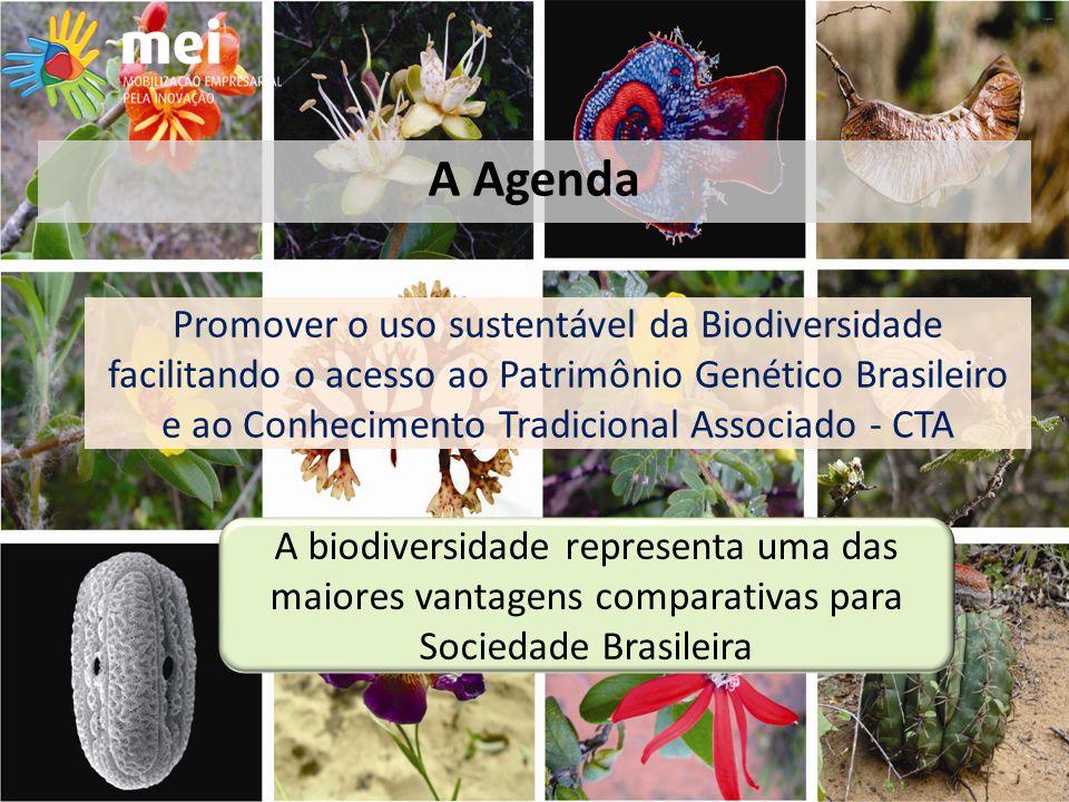 Promover o uso sustentável da Biodiversidade facilitando o acesso ao Patrimônio Genético Brasileiro e ao Conhecimento Tradicional Associado - CTA A biodiversidade representa uma das maiores vantagens comparativas para Sociedade Brasileira A Agenda