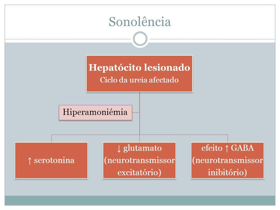 Sonolência Hepatócito lesionado Ciclo da ureia afectado serotonina glutamato (neurotransmissor excitatório) efeito GABA (neurotransmissor inibitório) Hiperamoniémia