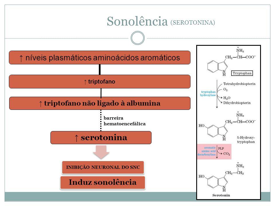 níveis plasmáticos aminoácidos aromáticos triptofano triptofano não ligado à albumina barreira hematoencefálica serotonina Sonolência INIBIÇÃO NEURONAL DO SNC Induz sonolência (SEROTONINA)