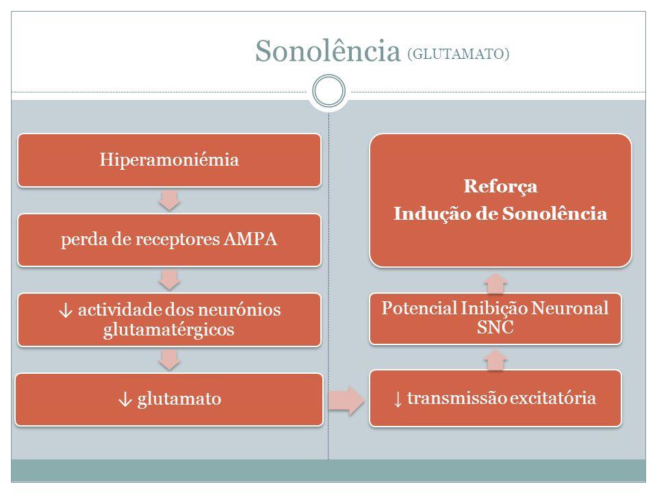 Sonolência Hiperamoniémiaperda de receptores AMPA actividade dos neurónios glutamatérgicos glutamato transmissão excitatória Potencial Inibição Neuronal SNC Reforça Indução de Sonolência (GLUTAMATO)