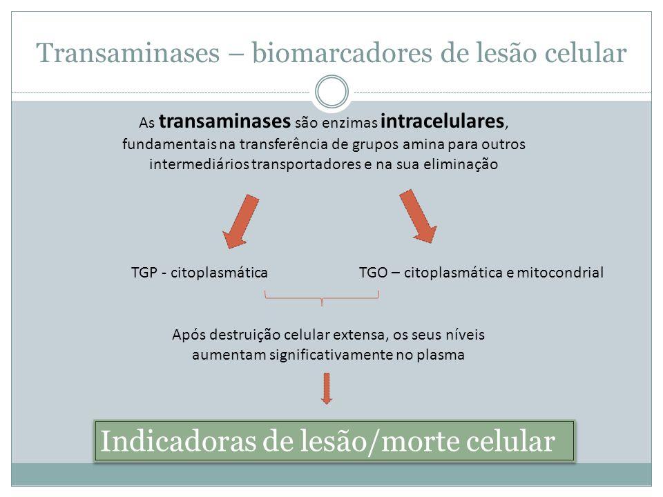 Transaminases – biomarcadores de lesão celular As transaminases são enzimas intracelulares, fundamentais na transferência de grupos amina para outros intermediários transportadores e na sua eliminação TGP - citoplasmáticaTGO – citoplasmática e mitocondrial Após destruição celular extensa, os seus níveis aumentam significativamente no plasma Indicadoras de lesão/morte celular Indicadoras de lesão/morte celular