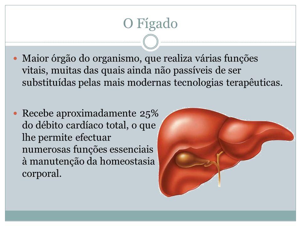 O Fígado Maior órgão do organismo, que realiza várias funções vitais, muitas das quais ainda não passíveis de ser substituídas pelas mais modernas tecnologias terapêuticas.