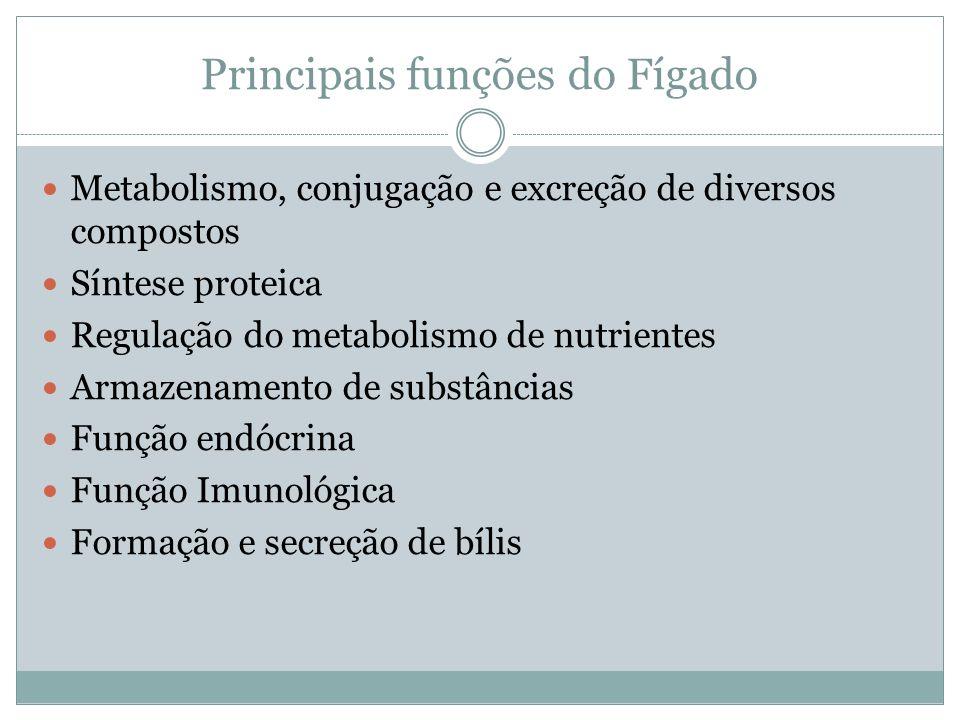 Principais funções do Fígado Metabolismo, conjugação e excreção de diversos compostos Síntese proteica Regulação do metabolismo de nutrientes Armazenamento de substâncias Função endócrina Função Imunológica Formação e secreção de bílis