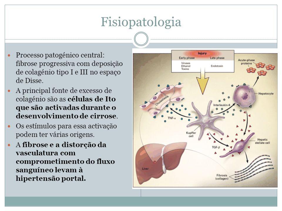 Fisiopatologia Processo patogénico central: fibrose progressiva com deposição de colagénio tipo I e III no espaço de Disse.