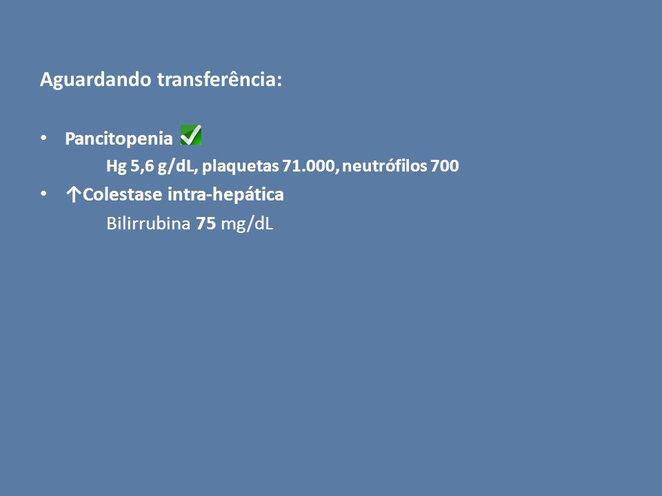 Aguardando transferência: Pancitopenia Hg 5,6 g/dL, plaquetas 71.000, neutrófilos 700 Colestase intra-hepática Bilirrubina 75 mg/dL