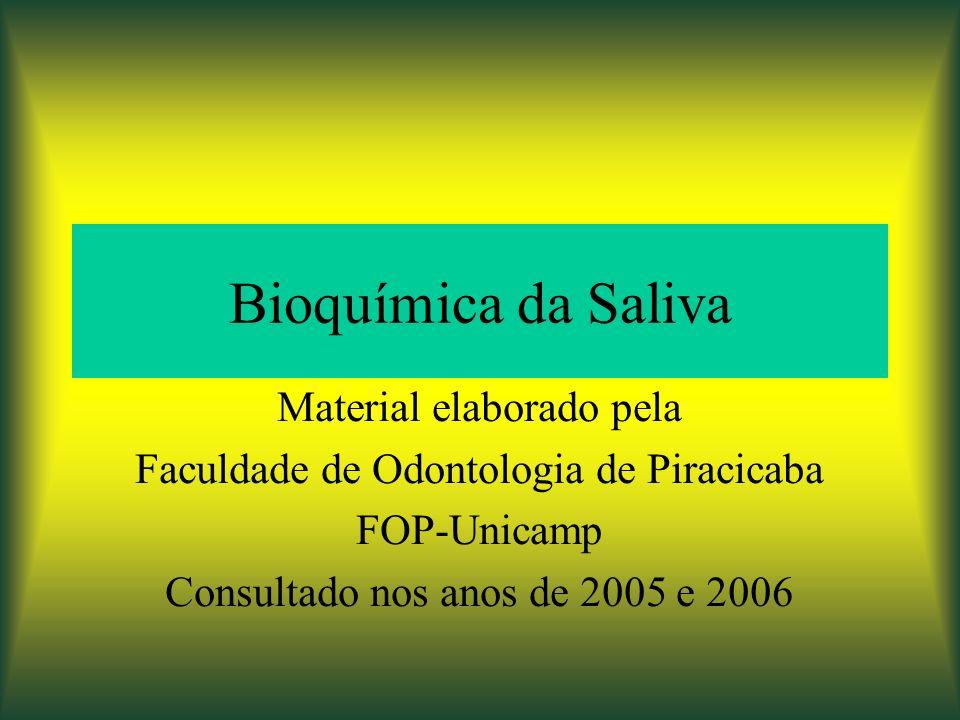 Bioquímica da Saliva Material elaborado pela Faculdade de Odontologia de Piracicaba FOP-Unicamp Consultado nos anos de 2005 e 2006