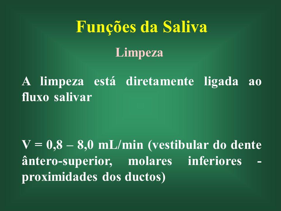 Funções da Saliva Limpeza A limpeza está diretamente ligada ao fluxo salivar V = 0,8 – 8,0 mL/min (vestibular do dente ântero-superior, molares inferi
