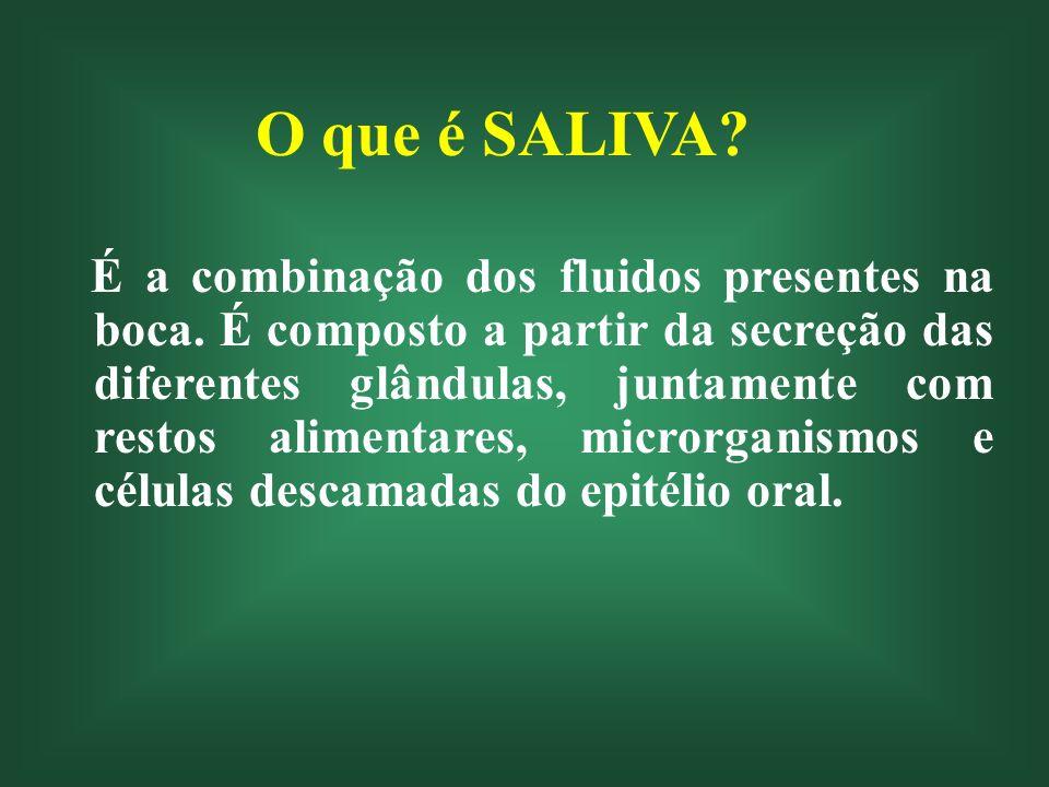 O que é SALIVA? É a combinação dos fluidos presentes na boca. É composto a partir da secreção das diferentes glândulas, juntamente com restos alimenta