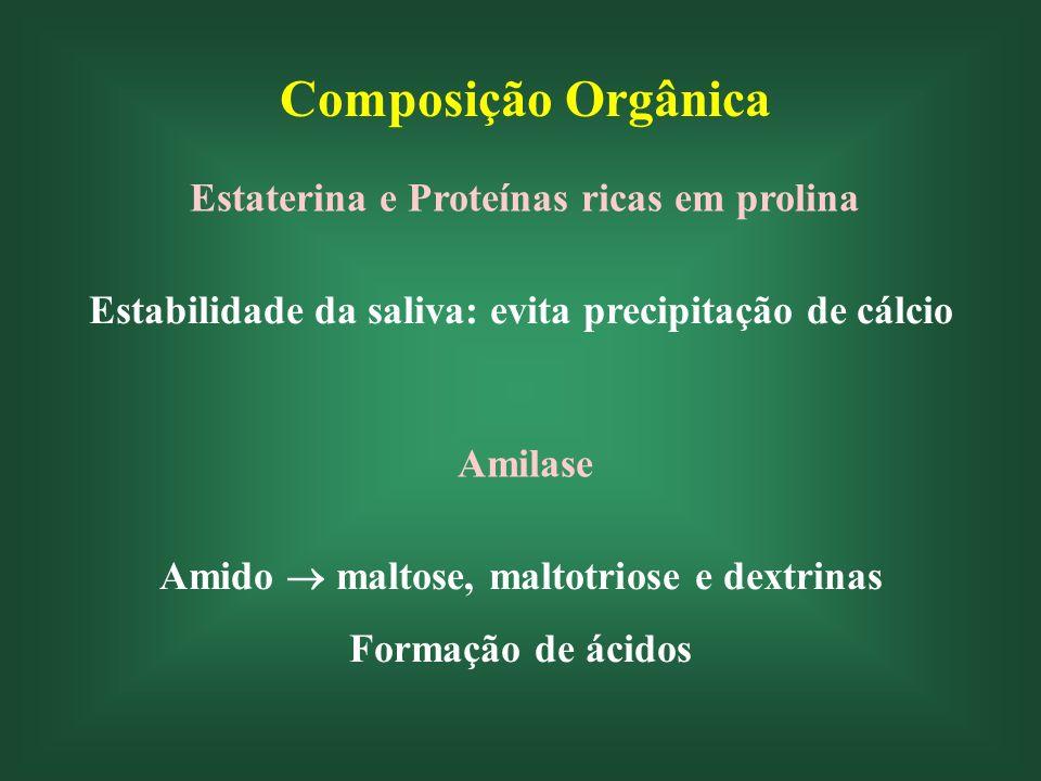 Composição Orgânica Estaterina e Proteínas ricas em prolina Estabilidade da saliva: evita precipitação de cálcio Amilase Amido maltose, maltotriose e dextrinas Formação de ácidos