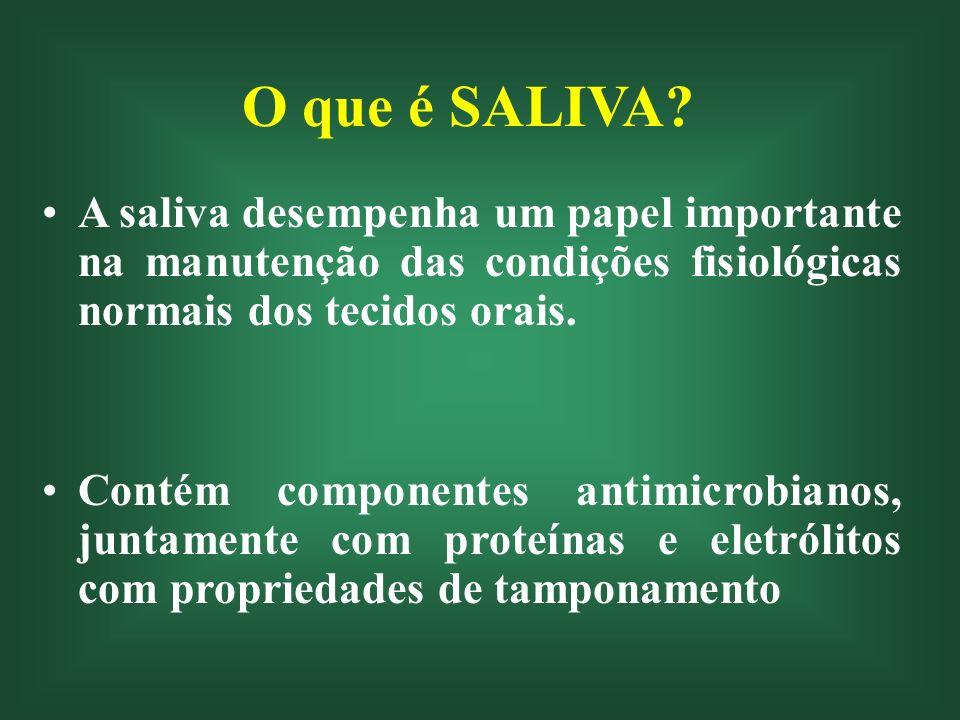A saliva na cavidade bucal Adulto: 1,0 mL de saliva em 200 cm 3 Espessura: 10 – 100 µm Composicão da película salivar varia em grande extensão, visto que as 6 maiores glândulas e as 200 - 400 glândulas menores têm seus orifícios em locais diferentes.