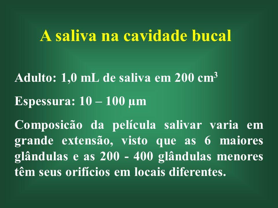 A saliva na cavidade bucal Adulto: 1,0 mL de saliva em 200 cm 3 Espessura: 10 – 100 µm Composicão da película salivar varia em grande extensão, visto