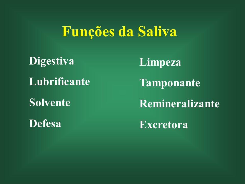 Funções da Saliva DIGESTIVA Amilase