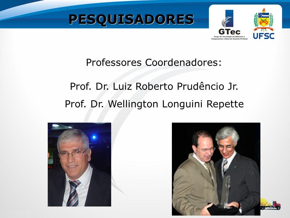 PESQUISADORES Professores Coordenadores: Prof. Dr. Luiz Roberto Prudêncio Jr. Prof. Dr. Wellington Longuini Repette
