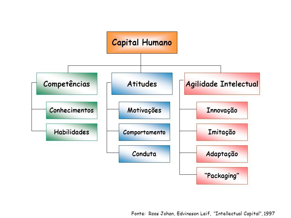 Fonte: Roos Johan, Edvinsson Leif, Intellectual Capital, 1997 Capital Humano CompetênciasAtitudesAgilidade Intelectual Conhecimentos Habilidades Motivações Comportamento Conduta Innovação Imitação Adaptação Packaging