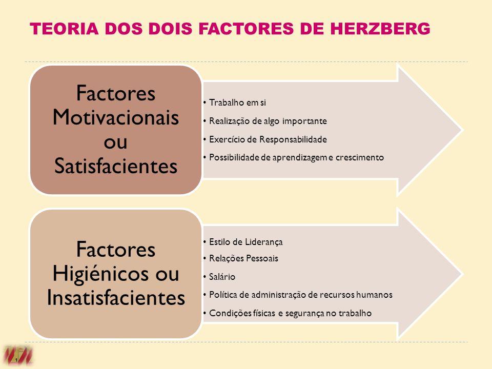 TEORIA DOS DOIS FACTORES DE HERZBERG Trabalho em si Realização de algo importante Exercício de Responsabilidade Possibilidade de aprendizagem e cresci