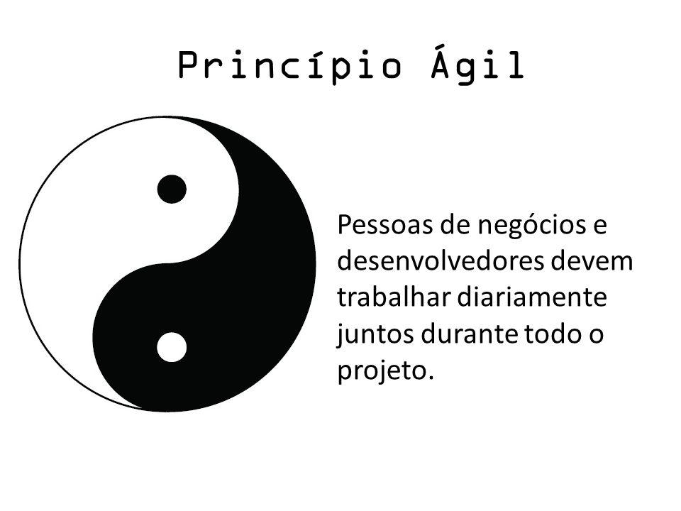 Princípio Ágil Pessoas de negócios e desenvolvedores devem trabalhar diariamente juntos durante todo o projeto.