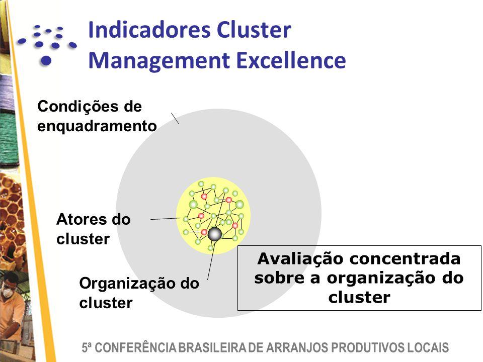 5ª CONFERÊNCIA BRASILEIRA DE ARRANJOS PRODUTIVOS LOCAIS Condições de enquadramento Atores do cluster Organização do cluster Avaliação concentrada sobre a organização do cluster Indicadores Cluster Management Excellence