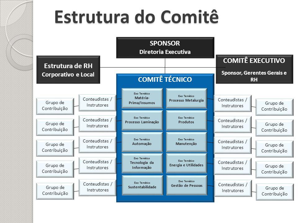 COMITÊ TÉCNICO Grupo de Contribuição Estrutura do Comitê SPONSOR Diretoria Executiva COMITÊ EXECUTIVO Sponsor, Gerentes Gerais e RH Eixo Temático Proc
