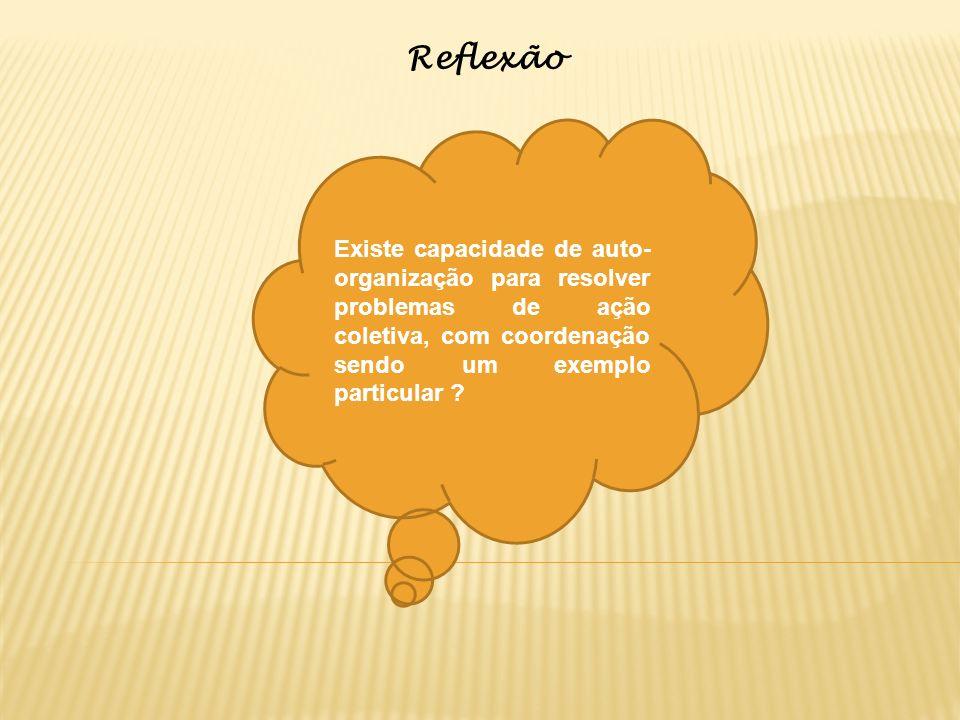 Reflexão Existe capacidade de auto- organização para resolver problemas de ação coletiva, com coordenação sendo um exemplo particular ?