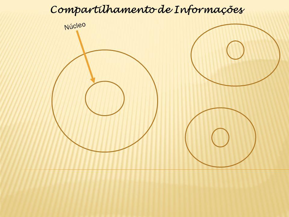 Núcleo Compartilhamento de Informações