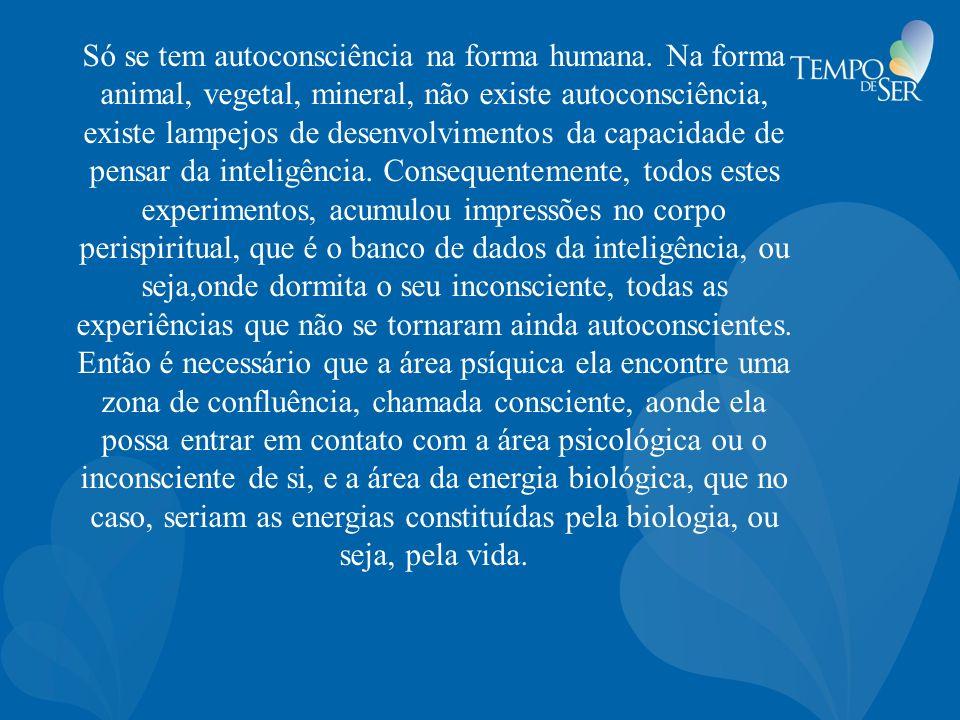 Só se tem autoconsciência na forma humana. Na forma animal, vegetal, mineral, não existe autoconsciência, existe lampejos de desenvolvimentos da capac