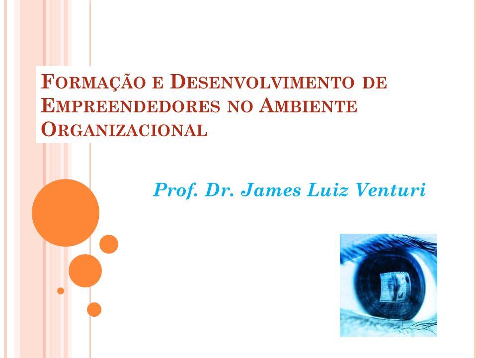 F ORMAÇÃO E D ESENVOLVIMENTO DE E MPREENDEDORES NO A MBIENTE O RGANIZACIONAL Prof. Dr. James Luiz Venturi