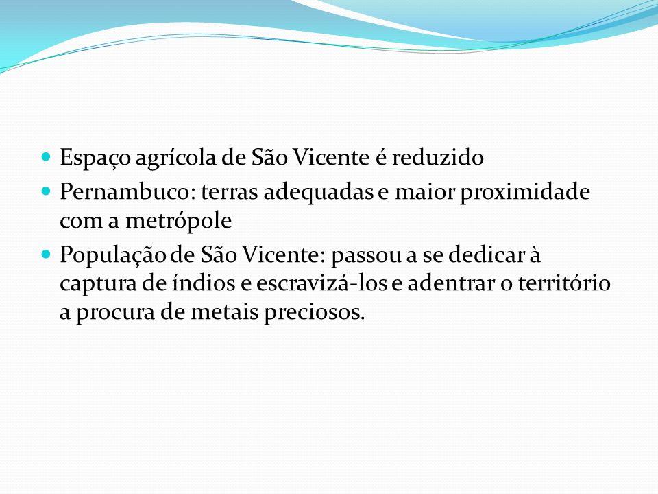 Espaço agrícola de São Vicente é reduzido Pernambuco: terras adequadas e maior proximidade com a metrópole População de São Vicente: passou a se dedicar à captura de índios e escravizá-los e adentrar o território a procura de metais preciosos.