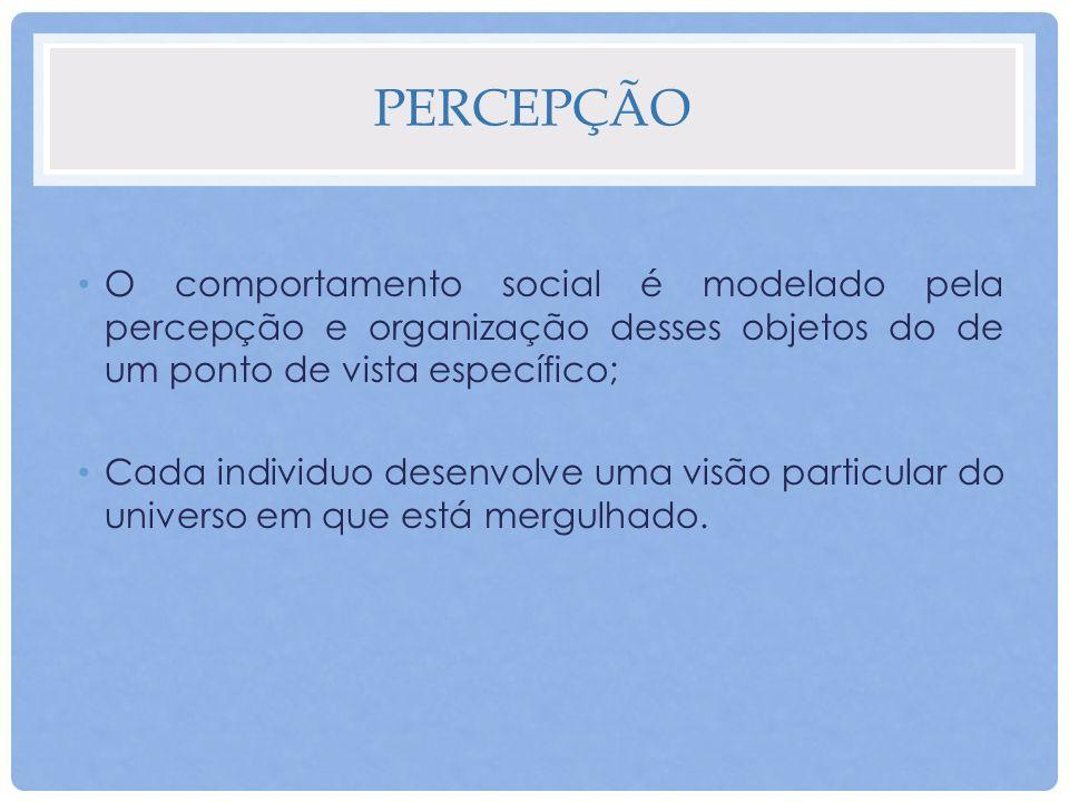 PERCEPÇÃO O comportamento social é modelado pela percepção e organização desses objetos do de um ponto de vista específico; Cada individuo desenvolve